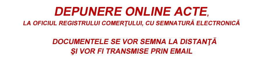 Depunere online acte ploiesti firme